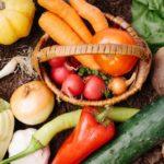 認知症・喘息・骨折予防の食事に夏野菜?【その原因Xにあり】SP